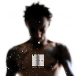 Tricky- False Idols album cover