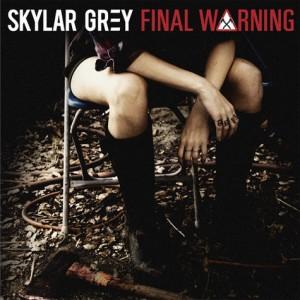 skylar grey final warning single cover
