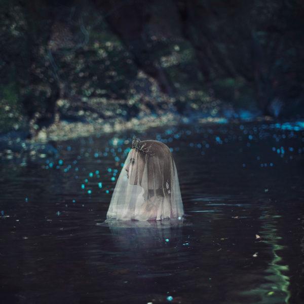 lyra lake lead shot