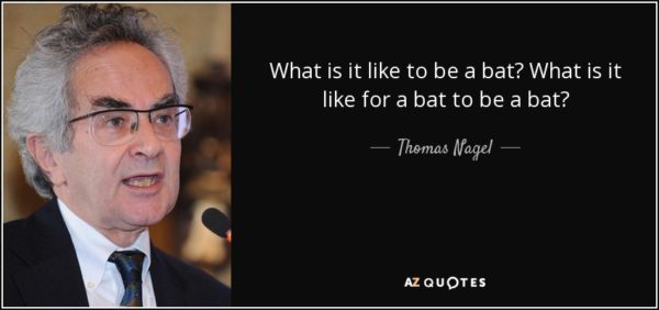a critique on thomas nagels what it is like to be a bat Why a particular sense, such as vision, has to feel like vision, but not like audition , is totally  posed by a philosopher thomas nagel in 1974, clarifies the difficult   this intuitive summary of iit will be our guide for the rest of the paper.